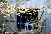 "After gathering audio and video footage, Chris, Andy and Grady Carter ready to leave a cotton gin that dates back to the 1830s and is rumored to be haunted to follow-up on an investigation. The ""paranormal investigators"" of Twisted Dixie are Grady Carter, Andy Carter, Chris Carter (all related), and Chris Phillips, seen in Antreville, South Carolina November 4, 2011."