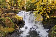 A man and a woman observe Whatcom Falls on Whatcom Creek in Whatcom Falls Park - Bellingham, Washington State, USA