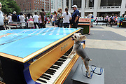"""88 Sing for Hope Pianos, supported by Chobani, Inc., come together for a day of free concerts to celebrate """"Art for All"""" on the Josie Robertson Plaza at Lincoln Center in New York, Sunday, June 16, 2013. (Photo by Diane Bondareff/Invision for Sing for Hope)"""