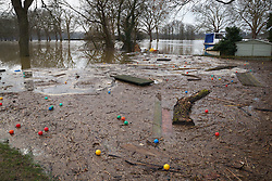 © Licensed to London News Pictures. 10/02/2014. Datchet, Berkshire, UK. Debris and rubbish from the River Thames washes up on the bank. Flooding in Datchet today, 10th February 2014 after the River Thames burst its banks. Photo credit : Rob Arnold/LNP