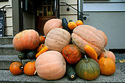stack of pumpkins on display