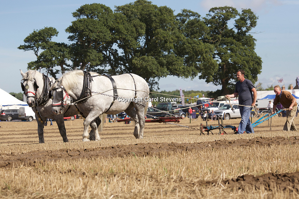 European Horse Ploughing Competition 2016<br />