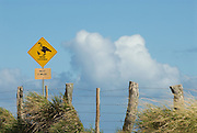 A sign warning of Nene Crossing for he next two miles - on the island of Molokai, Hawaii.