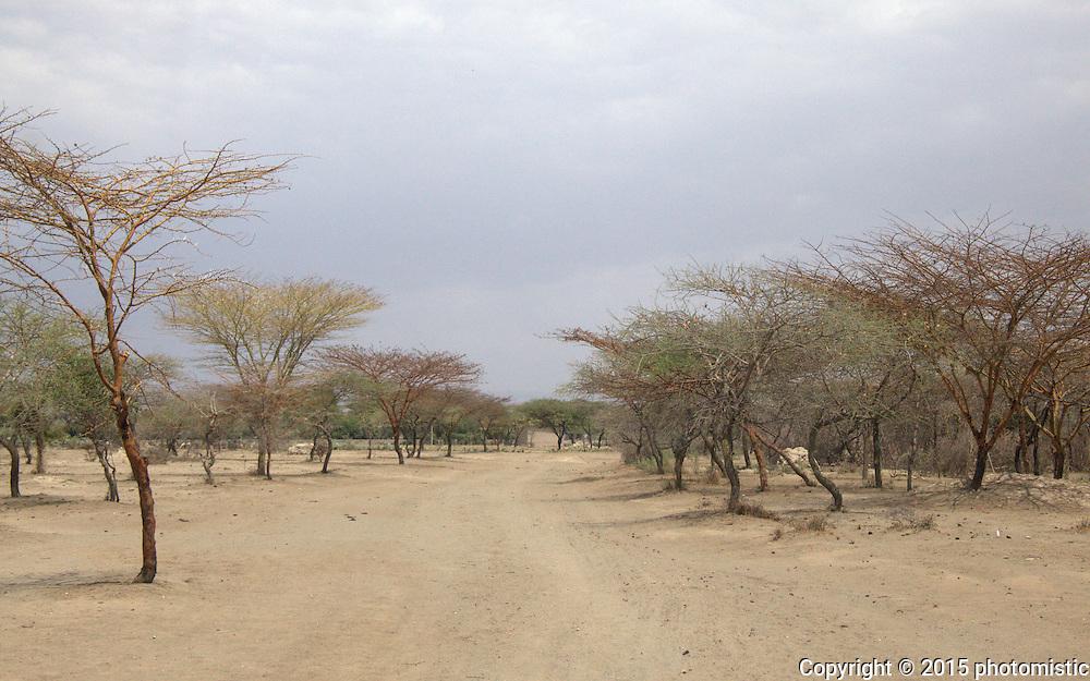 Abiatta-Shala National Park