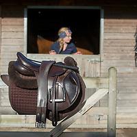 Saddles & Girths