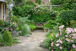 Terrace with wooden bench seat and decorative paving. Rosa 'Ispahan' to left and R. 'Felicia' to right. High trellis boundary with climbers.
