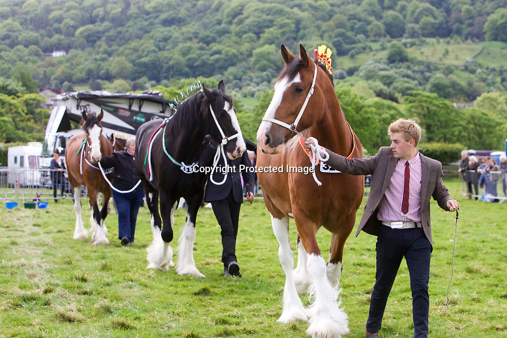 FRONT<br />