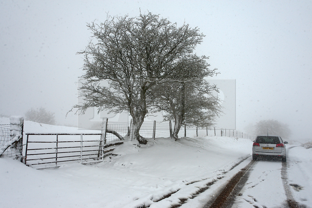 © Licensed to London News Pictures. 04/04/2019. Builth Wells, Powys, Wales, UK. A motorist drives through a wintry landscape along a narrow lane road through blizzard conditions on the Mynydd Epynt high moorland between Builth Wells and Brecon in Powys, UK. Photo credit: Graham M. Lawrence/LNP