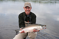 A nice Silver Salmon !..shot on the Kanektok River, Alaska, USA..
