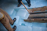 Rockywold Deephaven Camps annual Ice Harvest on Squam Lake.  Karen Bobotas Photographer