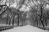 New York. Central park in winter in the snow ,  san remo building, Manhattan  New York  Usa /  Central park, en hiver dans la neige.   New York  USa