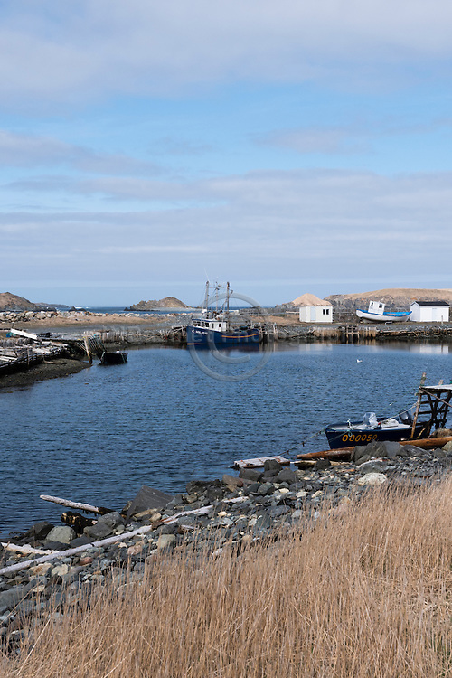 Fishing boats in Ferryland, NL Canada