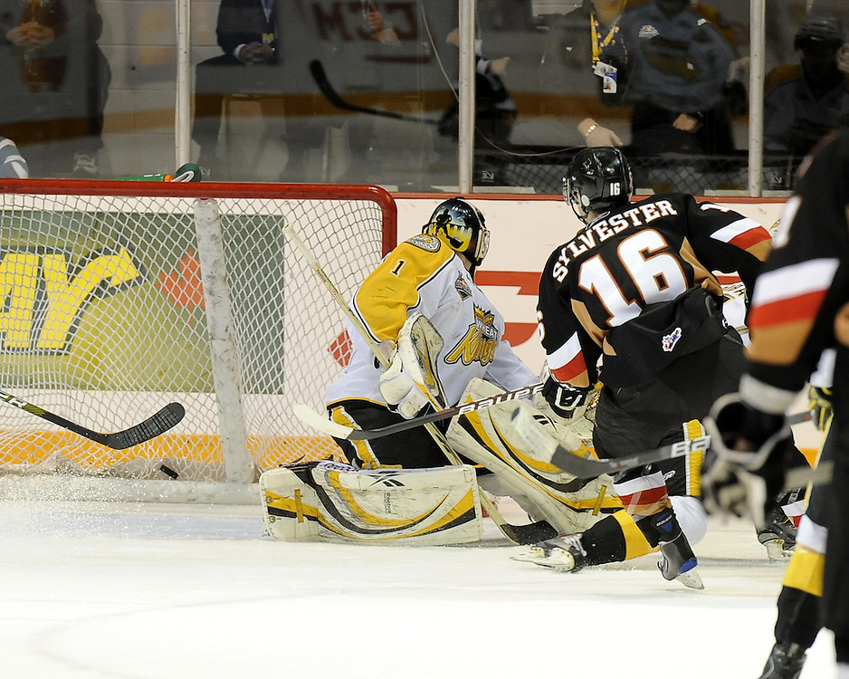 The Calgary Hitmen score a first period goal in the semi-final game of the 2010 MasterCard Memorial Cup in Brandon, MB on Friday May 21. Photo by Aaron Bell/CHL Images
