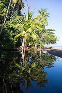 Caletas Reserve, Osa Peninsula, Costa Rica, Central America