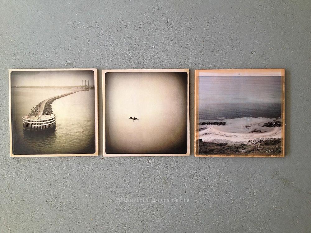 Rotenburg. Baja Sagonia, Alemania. Photography, C-Print with wax, 23.05.2013. 20 x 20 cm Nero Pécora/La pared ©2013