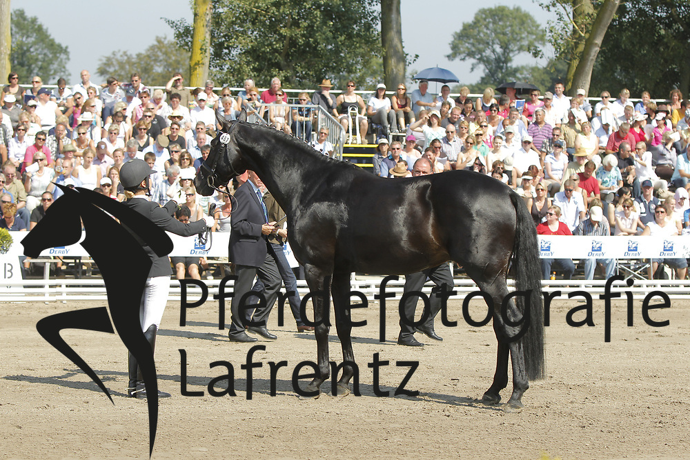 HOFFMANN Jennifer, Hofmarschall V<br /> Warendorf Bundeschampionate - 2011<br /> <br /> (c) www.sportfotos-Lafrentz. de/Stefan Lafrentz