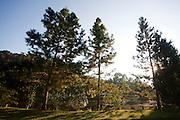 Santa Leopoldina_ES, Brasil...Paisagem da pousada Gastholf em Santa Leopoldina...The landscape of Gastholf hotel in Santa Leopoldina...Foto: LEO DRUMOND / NITRO