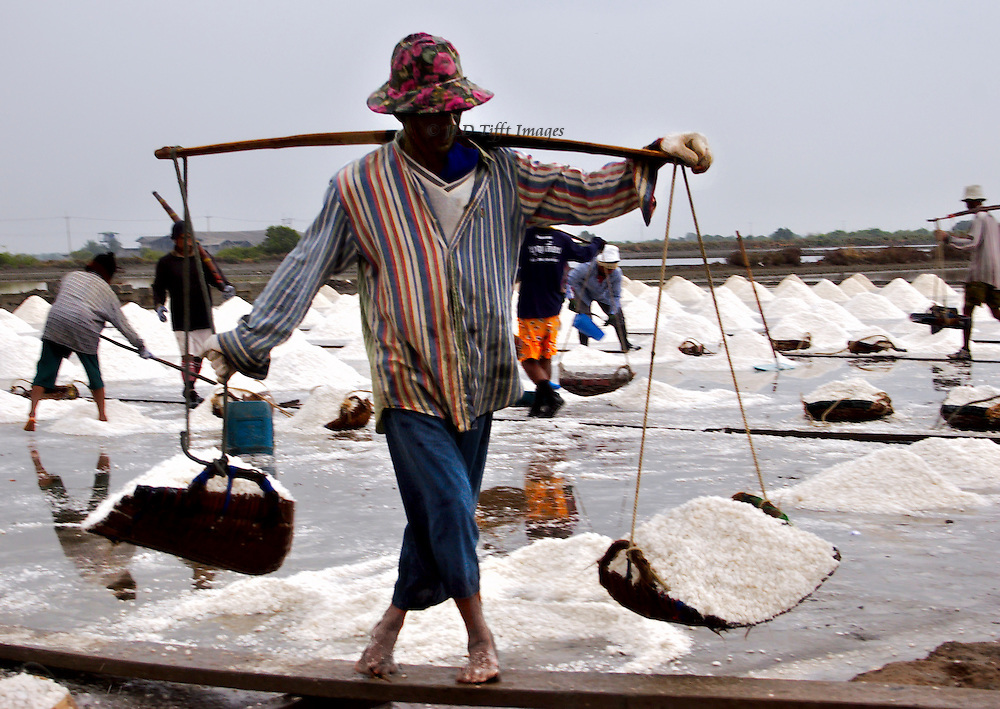 Sea salt evaporating industry near Sakhon, Thailand.  Conical piles of salt, 4-5 workers in the backgroud; main figure carries a yoke, its pans filled with salt, as he steps carfully along a wooden plank bridge over the water.