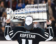 The Kings' Anze Kopitar celebrates after defeating the New York Rangers 3-2 in double-overtime to win the 2014 Stanley Cup Final at Staples Center Friday.