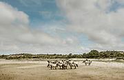 Hlland, Nationaal Park Zuid-Kennemerland