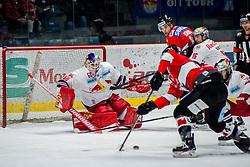 01.02.2019, Ice Rink, Znojmo, CZE, EBEL, HC Orli Znojmo vs EC Red Bull Salzburg, 43. Runde, im Bild v.l. Lukas Herzog (EC Red Bull Salzburg) Petr Mrazek (HC Orli Znojmo) Marek Kalus (HC Orli Znojmo) Ryan Duncan (EC Red Bull Salzburg) // during the Erste Bank Eishockey League 43th round match between HC Orli Znojmo and EC Red Bull Salzburg at the Ice Rink in Znojmo, Czechia on 2019/02/01. EXPA Pictures © 2019, PhotoCredit: EXPA/ Rostislav Pfeffer