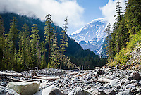 The Carbon River valley and carbon glacier, Mount Rainier National Park, Washington, USA.