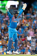 SYDNEY - NOVEMBER 25: Indian player Rishabh Pant (wk) appeals for a wicket at the International Gillette T20 cricket match between Australia and India at The Sydney Cricket Ground in NSW on November 25, 2018. (Photo by Speed Media/Icon Sportswire)