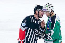 Ziga Pance (HDD Tilia Olimpija, #19) talking to referee Thomas Berneker during ice-hockey match between HDD Tilia Olimpija and EC KAC in 32nd Round of EBEL league, on December 30, 2010 at Hala Tivoli, Ljubljana, Slovenia. (Photo By Matic Klansek Velej / Sportida.com)