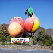 The giant fruit sculpture welcoming visitors to Cromwell, Otago. Cromwell is located in the valley of the Upper Clutha, deep in the heart of the dry interior of Central Otago and is home to the merino and deer farmer, and orchards and vineyards,  Cromwell, South Island, New Zealand, 24th March 2011, Photo Tim Clayton.