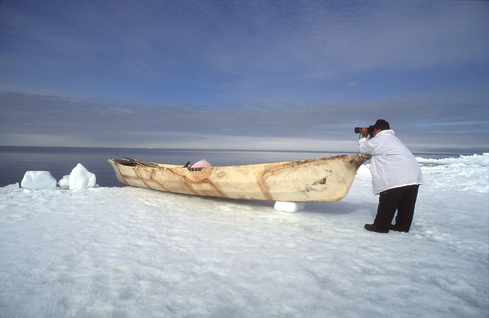 Barrow, Alaska, Native whaler scans the water for Bowhead whales from his camp on the edge of the sea ice