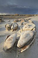 "The ""Egg Factory"" sandstone formations, Bisti Badlands, Bisti/De-Na-Zin Wilderness, New Mexico"