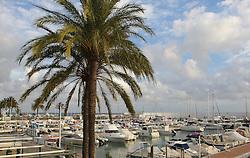 10.01.2012, Marbella, Spanien, ESP, Marbella im Focus, im Bild Sportboothafen von Marbella, Andalusien, Spanien. EXPA Pictures © 2012, PhotoCredit: EXPA/ Eibner/ Andre Latendorf..***** ATTENTION - OUT OF GER *****