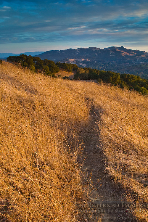 Hiking trail through hills at sunset, Briones Regional Park, Contra Costa County, California