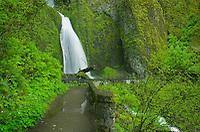 Wahkeena Falls, Columbia River Gorge National Scenic Area, Oregon
