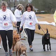 The 7th annual Beethoven 15K & 5K