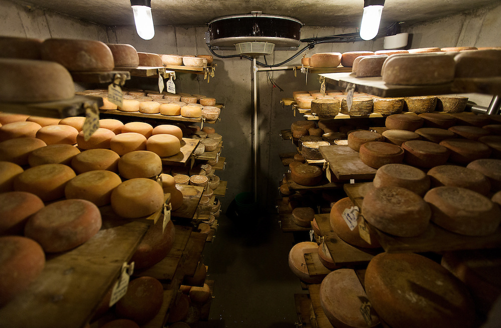 WESTBY, WI — DECEMBER 9: Wheels of cheese age in an underground climate-controlled room at Hidden Springs Creamery. These cheeses are kept in cool, damp concrete enclosures to precisely control the aging process.