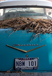 03 November, 2005. New Orleans, Louisiana. Post Katrina. <br /> Flood debris rests on the trunk of a classic Chevrolet amidst the remains of Oak Grove trailer park in Saint Bernard parish just south of New Orleans. Hurricane Katrina caused a 20ft tidal surge to sweep over the land, devastating much of the parish.<br /> Photo; ©Charlie Varley/varleypix.com