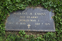 31 August 2017:   Veterans graves in Dawson Cemetery in eastern McLean County.<br /> <br /> Wilkins A Evans  Sergeant US Army  World War I  Dec 19 1895  Sep 7 1971