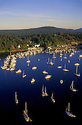 Aerial image of Roche Harbor Resort and Hotel de Haro on San Juan Island, Washington, Pacific Northwest