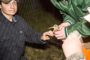 Wildlife management students from University of Wisconsin-Stevens Point remove a woodcock from a mist net during a banding program near Bancroft, Wisconsin.