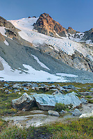 Glaciated Peaks of Boulder/Salal Divide near Athelney Pass, Coast Range British Columbia Canada
