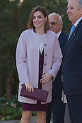 MADRID, SPAIN - JANUARY 12:<br /> <br />  Queen Letizia of Spain attends Foundation Against Drug Addiction (FAD) in Madrid, Spain. <br /> ©Exclusivepix Media