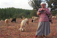 young woman knitting while tening her goats in rural area of south westrn Turkey.