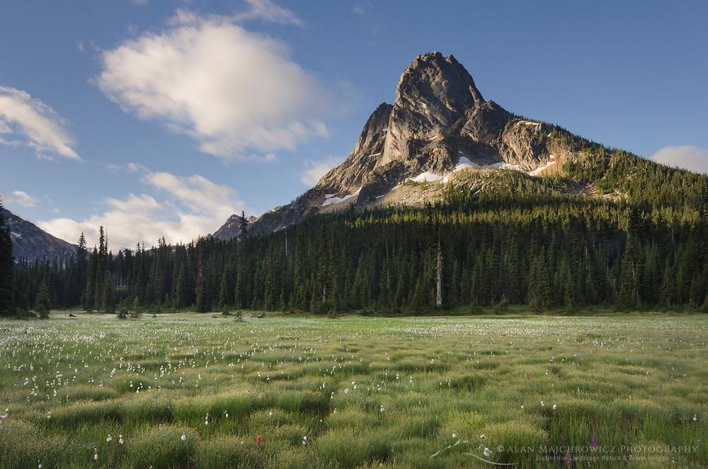 Liberty Bell Mountain seen from green meadows of Washington Pass, North Cascades Washington