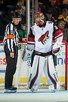 KELOWNA, BC - SEPTEMBER 29:  Darcy Kuemper #35 of the Arizona Coyotes stands in net and speaks to a referee against the Vancouver Canucks at Prospera Place on September 29, 2018 in Kelowna, Canada. (Photo by Marissa Baecker/NHLI via Getty Images)  *** Local Caption *** Darcy Kuemper;