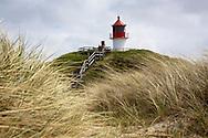 DEU, Germany, Schleswig-Holstein, North Sea,  Amrum island, dunes near Norddorf, in the background the cross light Norddorf, lighthouse.<br /> <br /> DEU, Deutschland, Schleswig-Holstein, Nordseeinsel Amrum, Duenenlandschaft bei Norddorf, im Hintergrund das Quermarkenfeuer Norddorf, Leuchtturm.