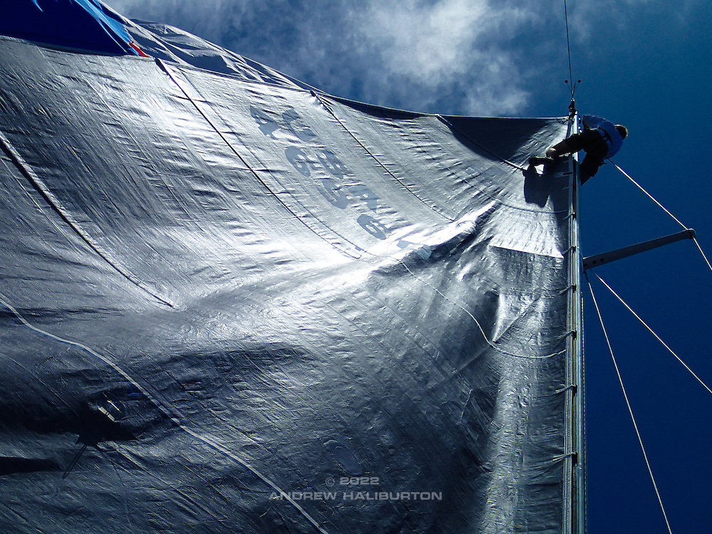 "Stuck spinnaker halyard...Chris Deiss at the masthead of J46 ""Riva"" trips the halyard snap shackle while the spinnaker is blanketed behind the mainsail.  Pacific Cup 2016 ocean race."