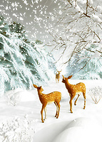 A stunning, snowy scene greets us. We watch as the snow continues to fall at a steady rate. Three deer are moving gently through the snow. They are moving together, and you would think they might move quickly. After all, it stands to reason that the snow could get worse, as the day goes on. Yet they seem to be quite at ease with everything that is going on. They are in a state of relaxation. This is a beautiful scene that brings to mind Christmas. Available in the form of cards, or on a variety of interior home décor products.