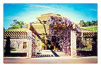 2014 March 20:  Spring at Robert Sinskey Vineyards Wine Tasting Room along the Silverado Trail in the Napa Valley wine region.  Stock Photos