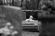Dog cemetery, Paris, France.